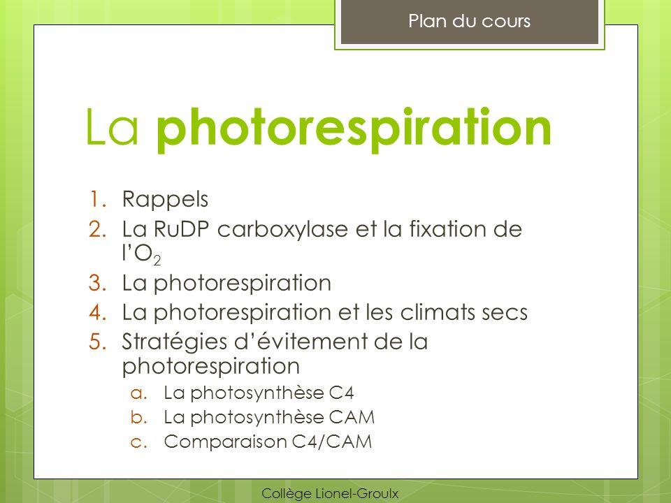 La photorespiration Rappels La RuDP carboxylase et la fixation de l'O2