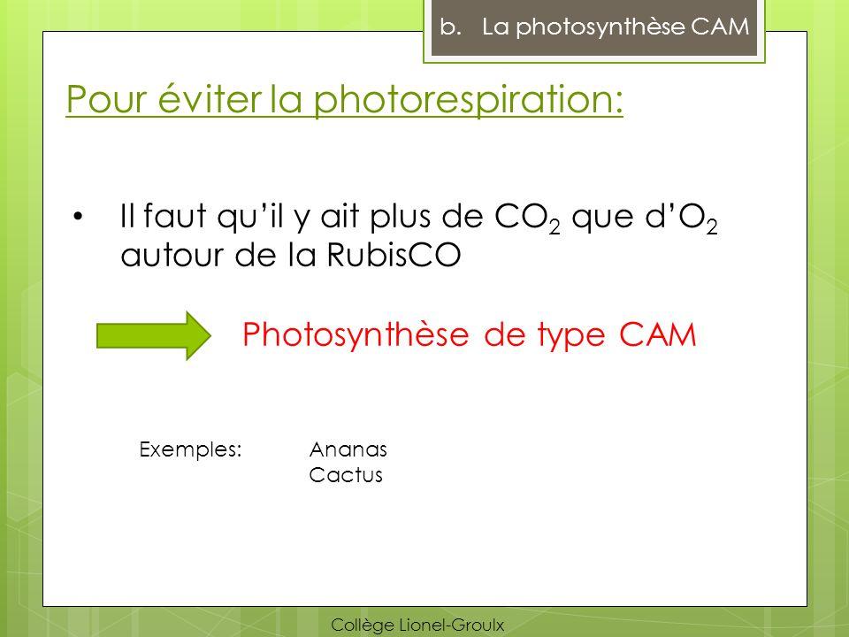 Pour éviter la photorespiration: