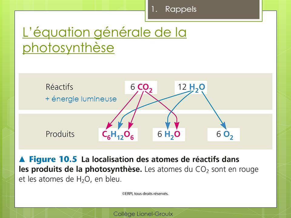 L'équation générale de la photosynthèse