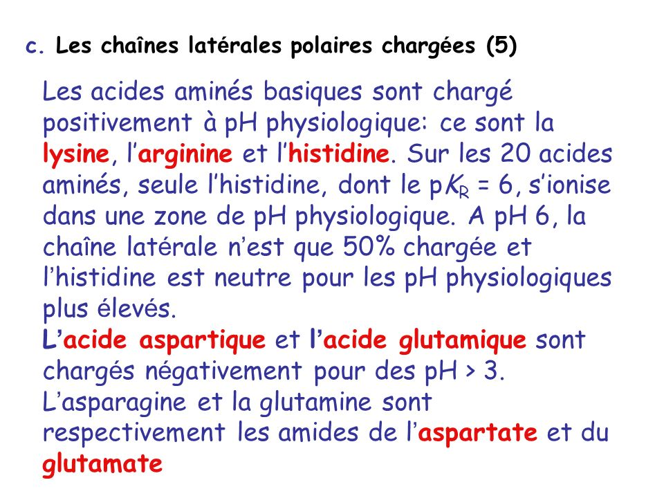 c. Les chaînes latérales polaires chargées (5)