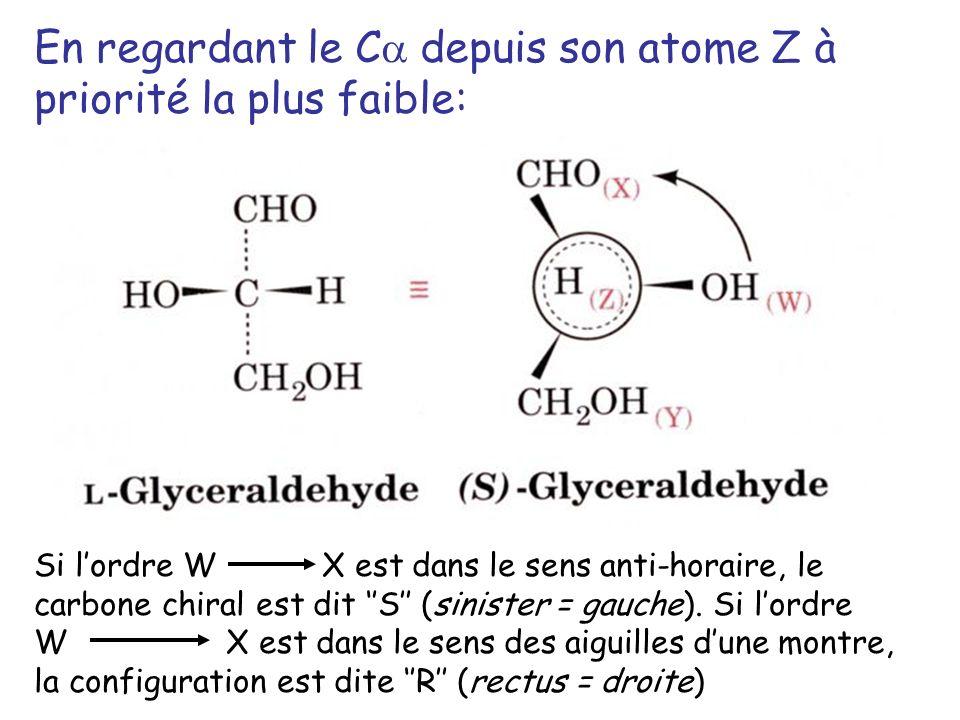 En regardant le C depuis son atome Z à priorité la plus faible:
