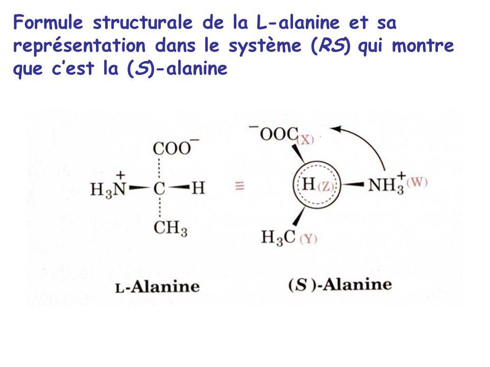 Formule structurale de la L-alanine et sa représentation dans le système (RS) qui montre que c'est la (S)-alanine