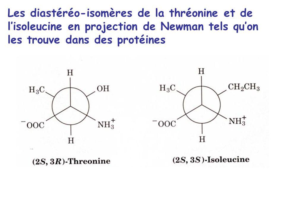 Les diastéréo-isomères de la thréonine et de l'isoleucine en projection de Newman tels qu'on les trouve dans des protéines