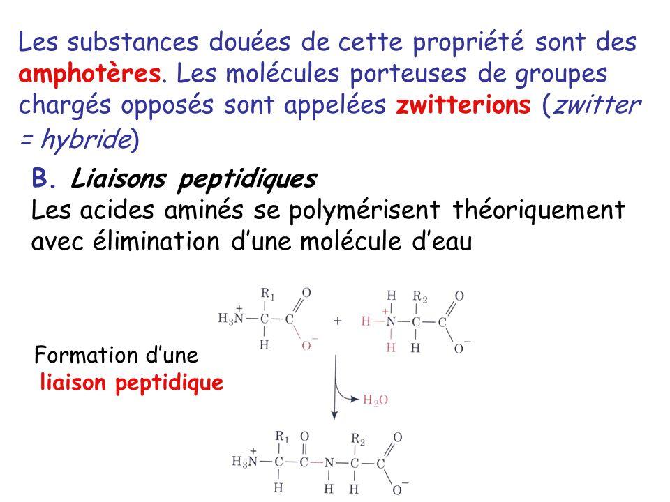 B. Liaisons peptidiques
