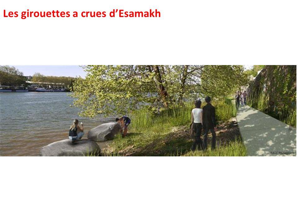 Les girouettes a crues d'Esamakh