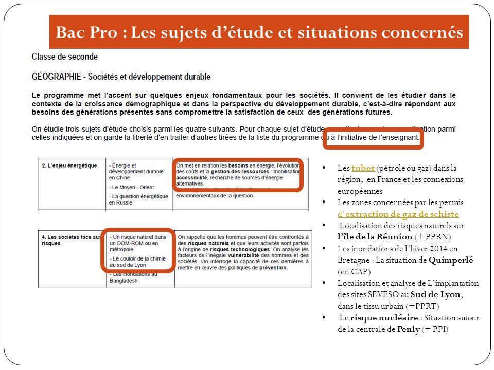 Bac Pro : Les sujets d'étude et situations concernés
