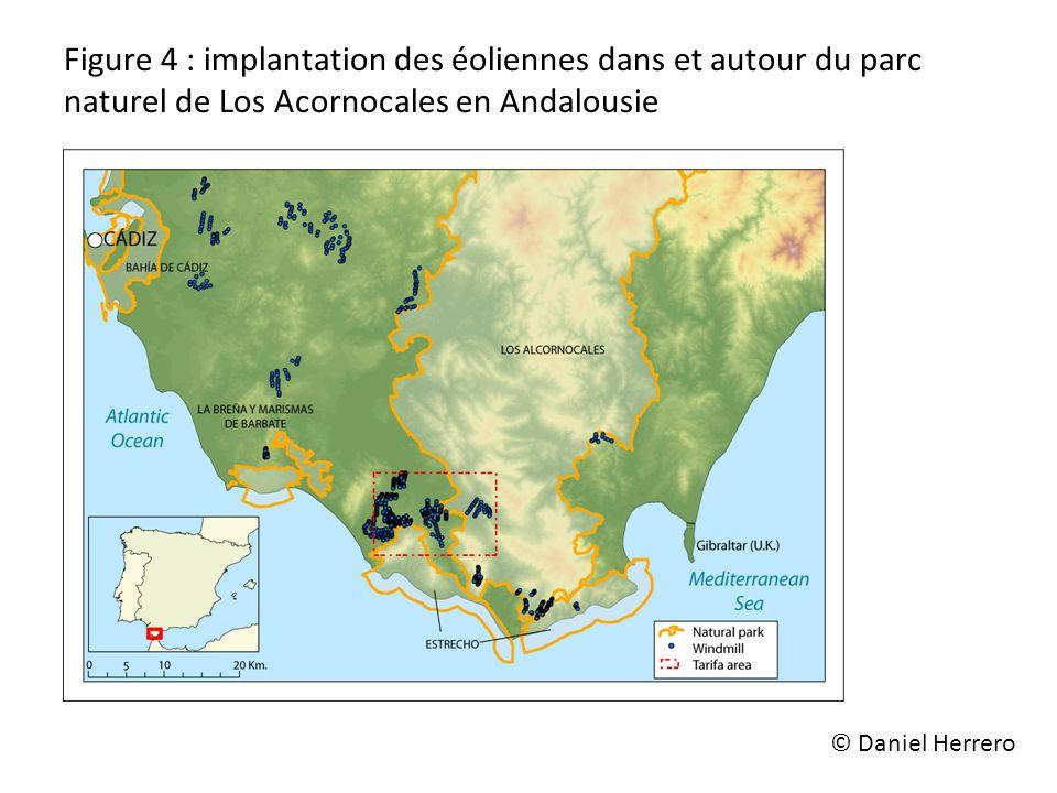 Figure 4 : implantation des éoliennes dans et autour du parc naturel de Los Acornocales en Andalousie