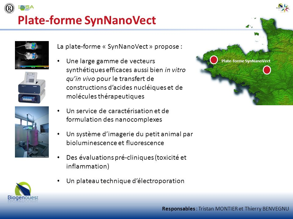 Plate-forme SynNanoVect