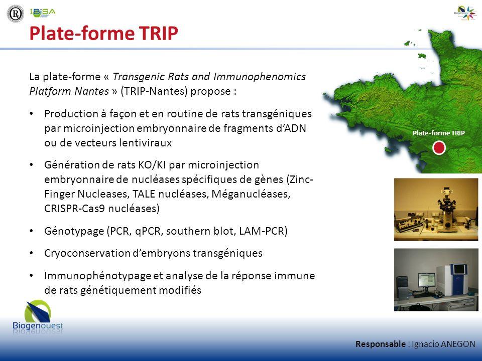 Plate-forme TRIP La plate-forme « Transgenic Rats and Immunophenomics Platform Nantes » (TRIP-Nantes) propose :