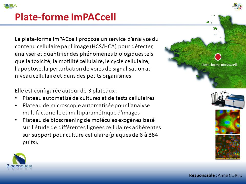 Plate-forme ImPACcell