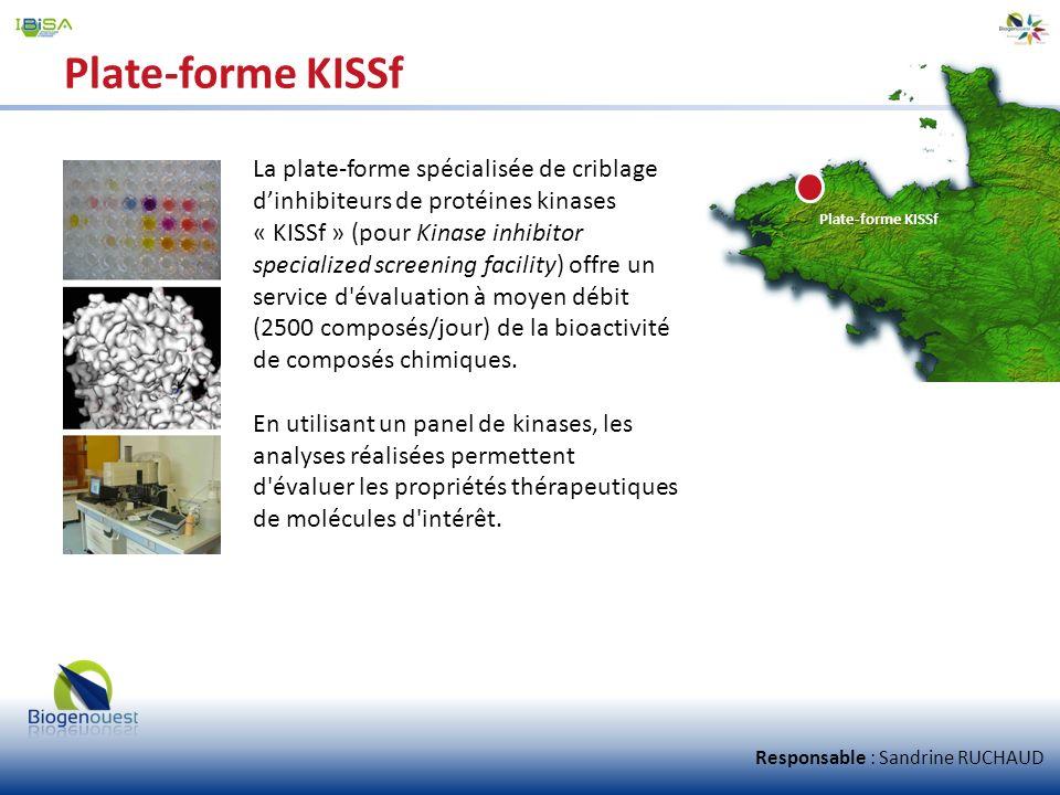 Plate-forme KISSf La plate-forme spécialisée de criblage d'inhibiteurs de protéines kinases.