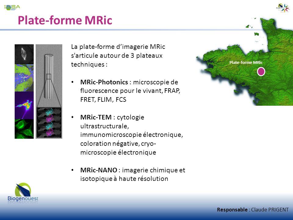 Plate-forme MRic La plate-forme d'imagerie MRic s articule autour de 3 plateaux techniques :