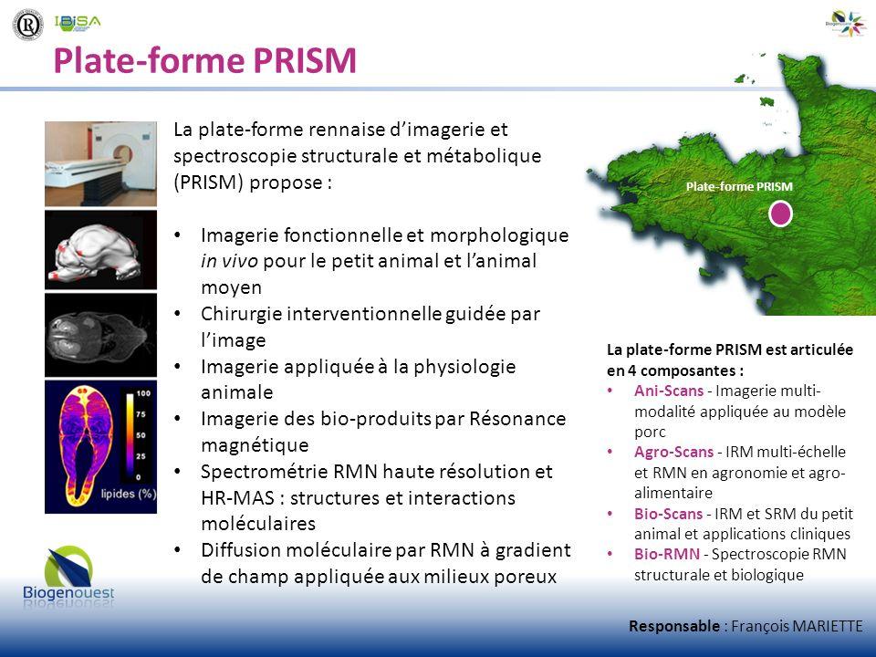 Plate-forme PRISM La plate-forme rennaise d'imagerie et spectroscopie structurale et métabolique (PRISM) propose :