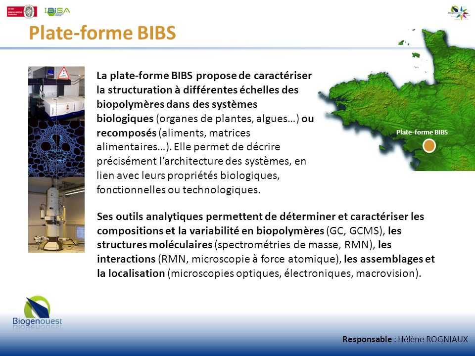 Plate-forme BIBS