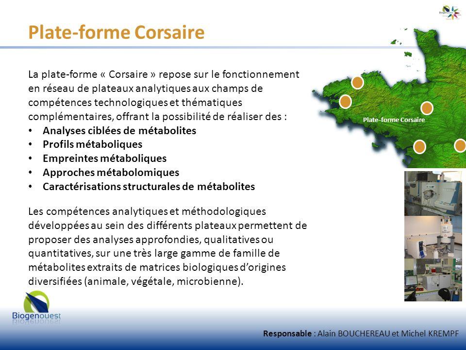 Plate-forme Corsaire