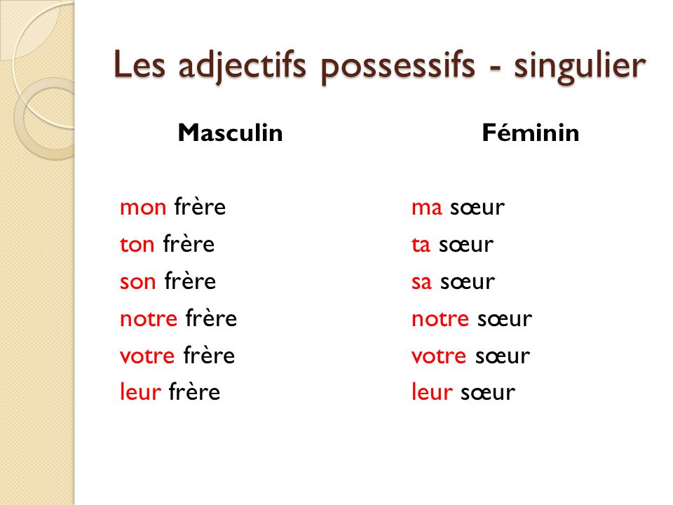 Les adjectifs possessifs - singulier