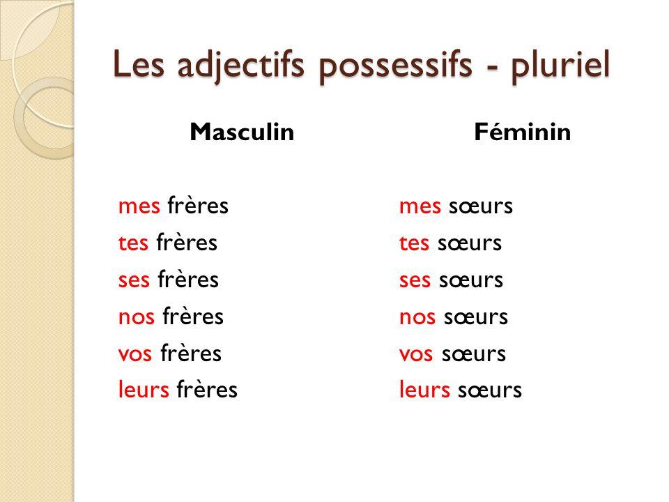 Les adjectifs possessifs - pluriel