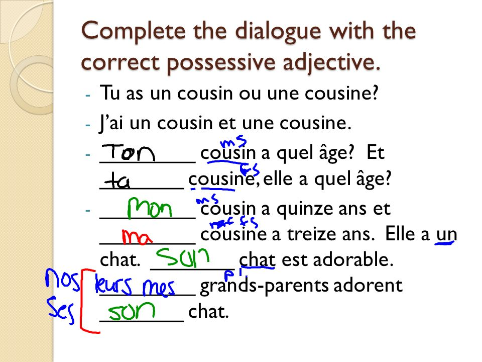 Complete the dialogue with the correct possessive adjective.