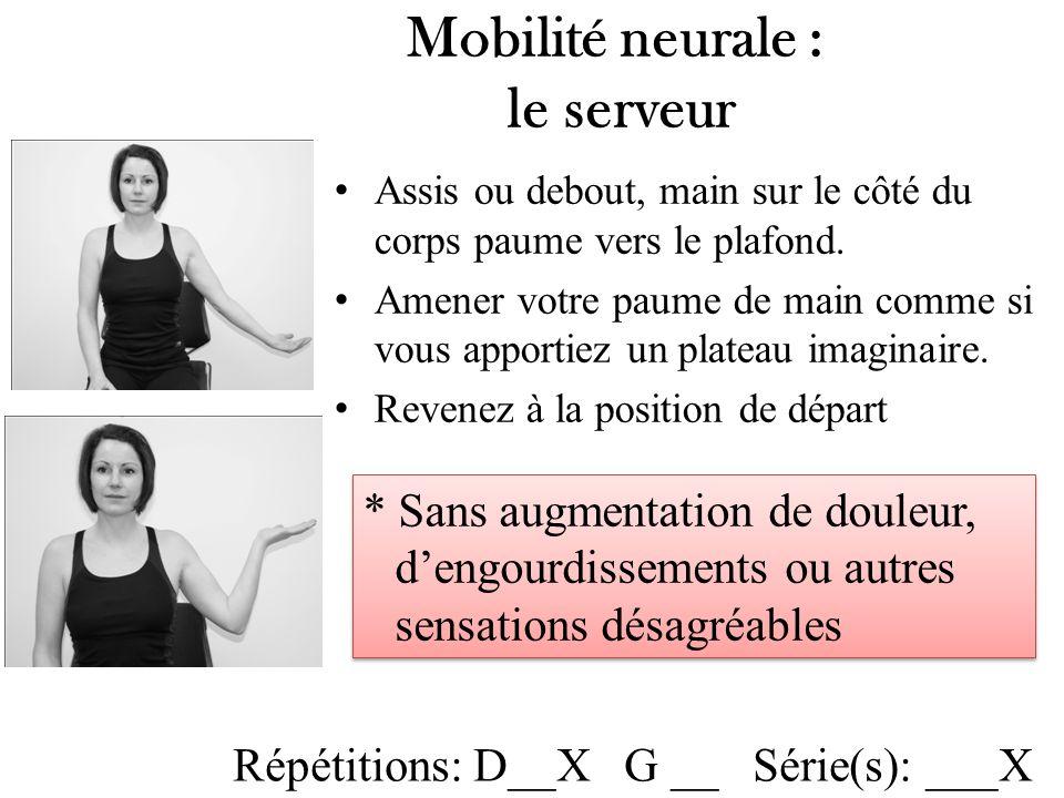 Mobilité neurale : le serveur