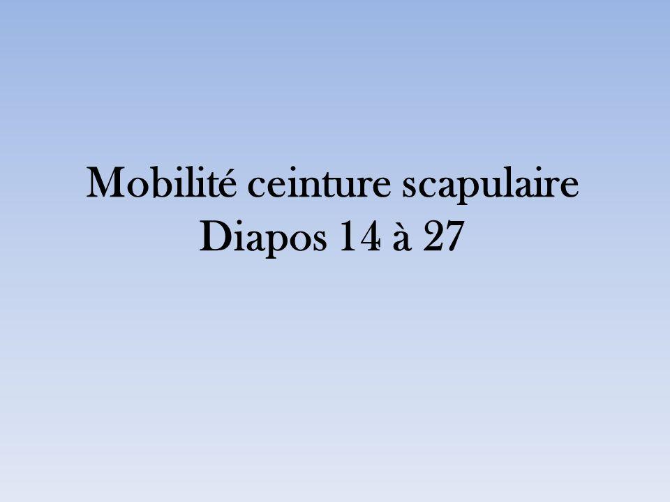 Mobilité ceinture scapulaire Diapos 14 à 27