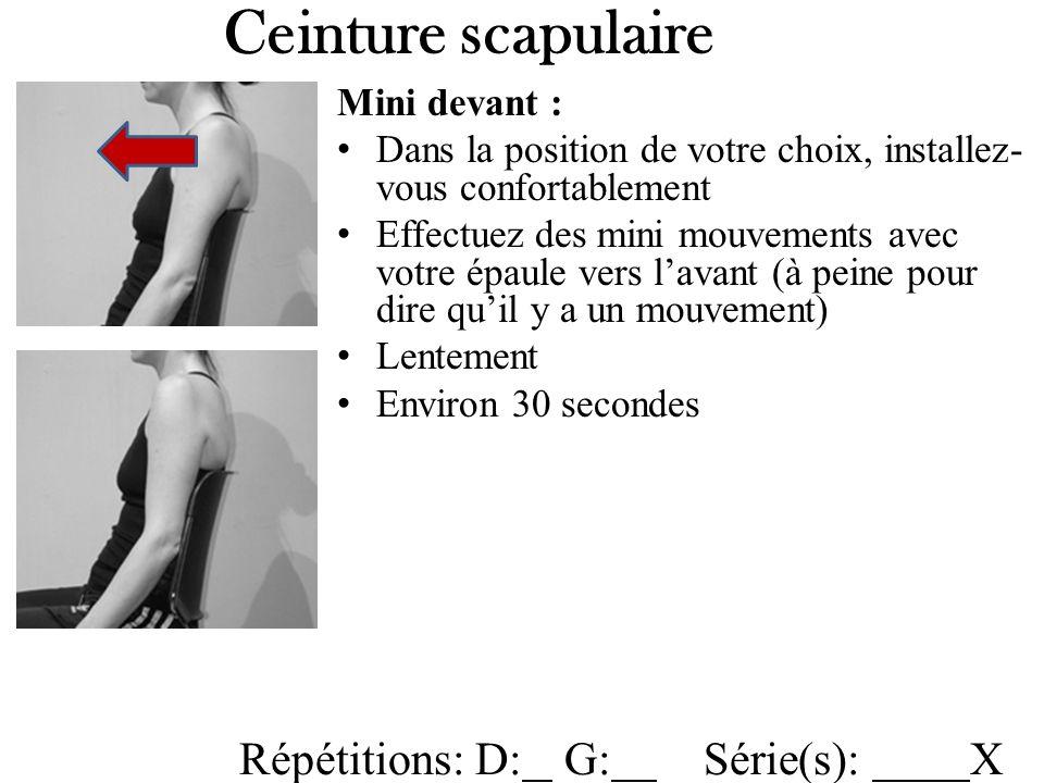 Ceinture scapulaire Répétitions: D: G: Série(s): X Mini devant :