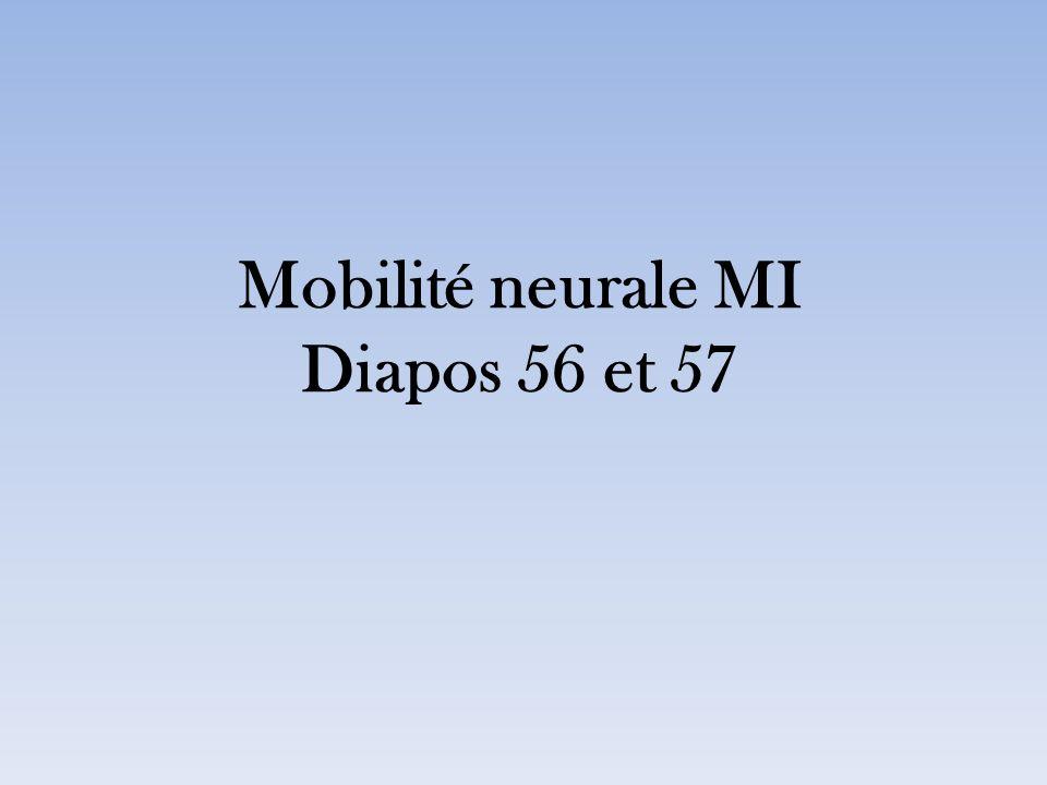 Mobilité neurale MI Diapos 56 et 57