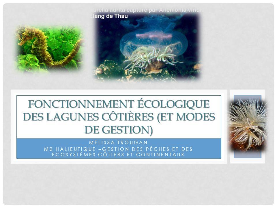 Fonctionnement écologique des lagunes côtières (et modes de gestion)