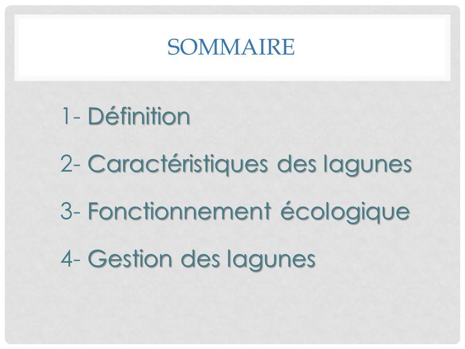 Sommaire 1- Définition 2- Caractéristiques des lagunes 3- Fonctionnement écologique 4- Gestion des lagunes