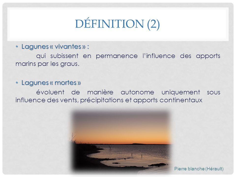 Définition (2) Lagunes « vivantes » :