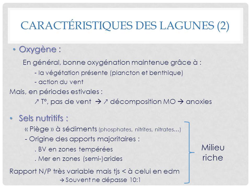 Caractéristiques des lagunes (2)