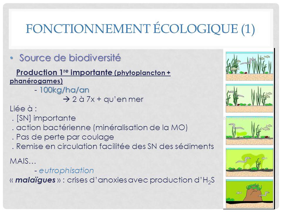 Fonctionnement écologique (1)