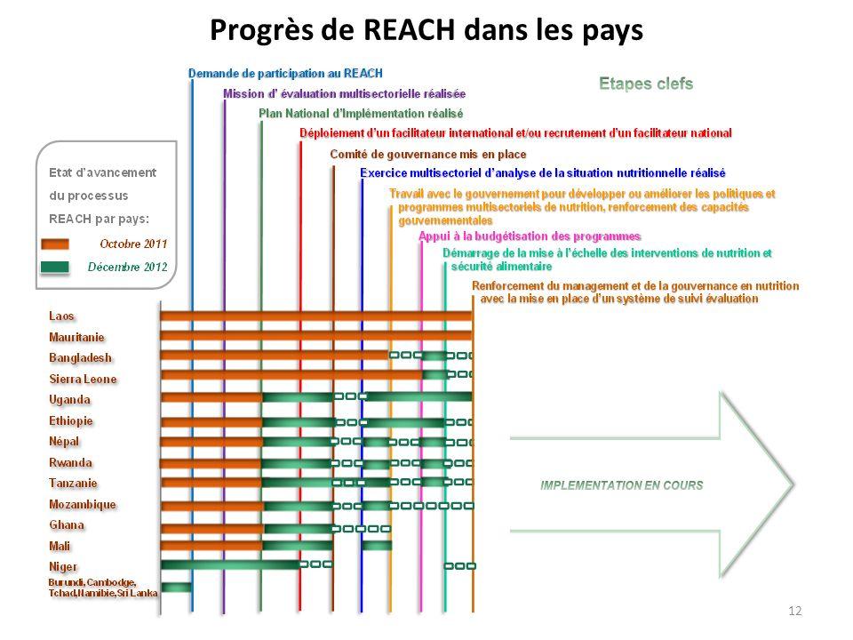 Progrès de REACH dans les pays
