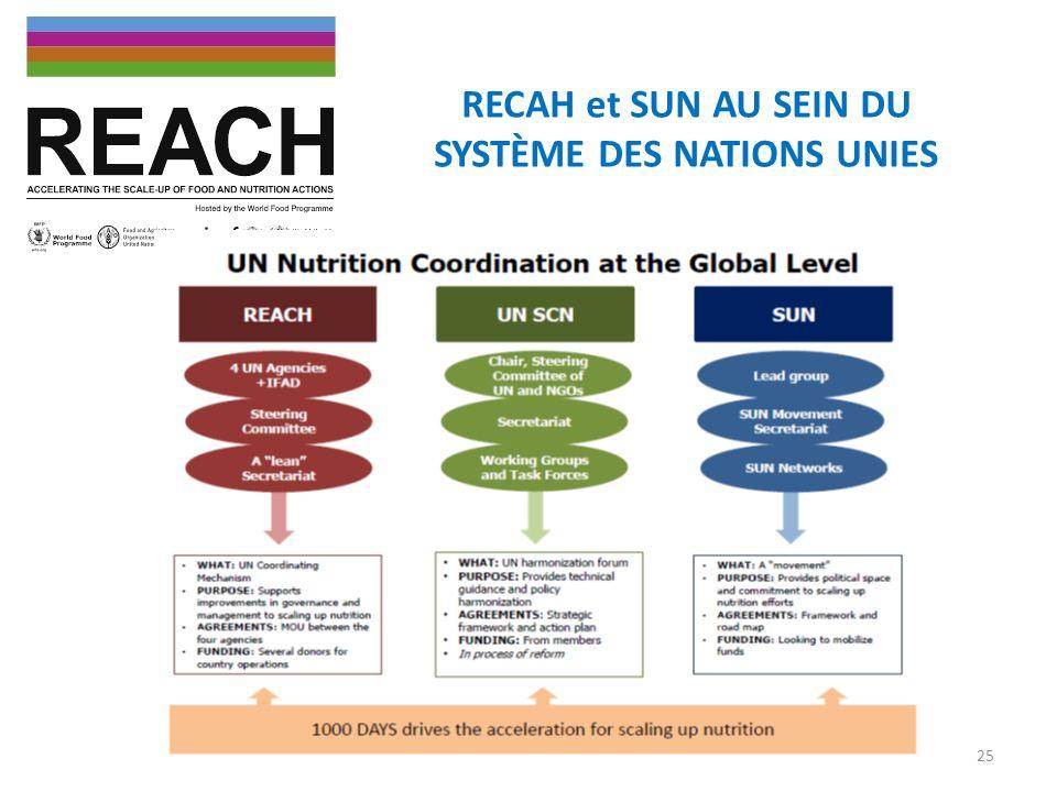 RECAH et SUN AU SEIN DU SYSTÈME DES NATIONS UNIES