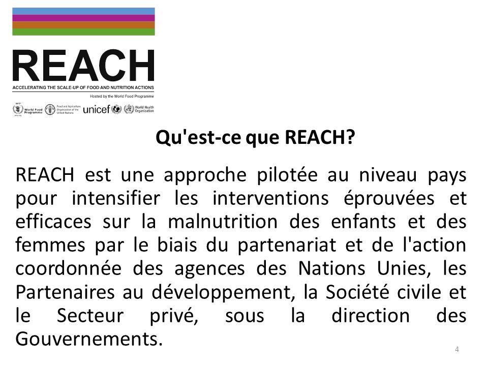 Qu est-ce que REACH