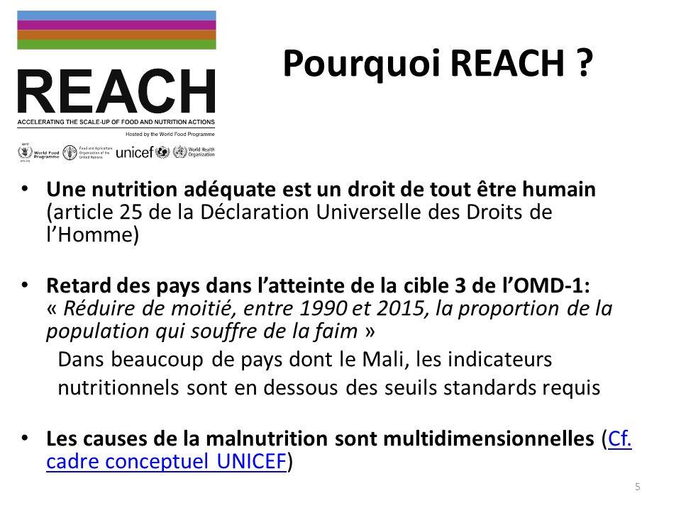 Pourquoi REACH Une nutrition adéquate est un droit de tout être humain (article 25 de la Déclaration Universelle des Droits de l'Homme)