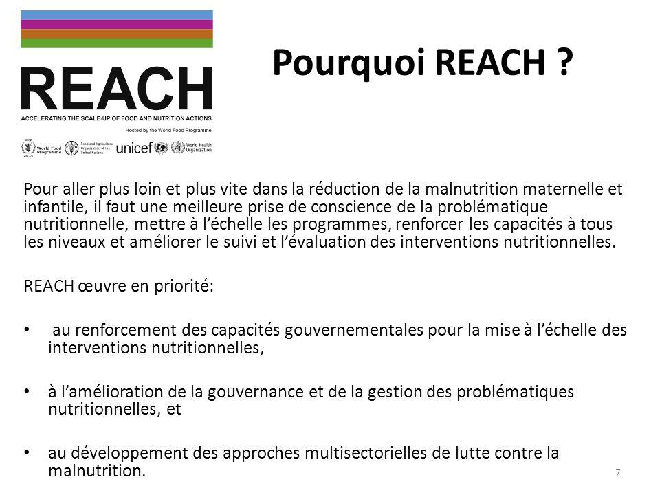 Pourquoi REACH