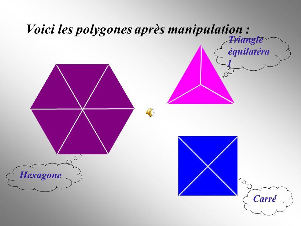 Voici les polygones après manipulation :