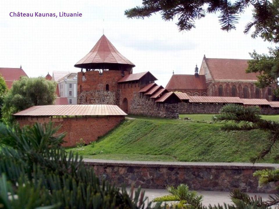 Château Kaunas, Lituanie