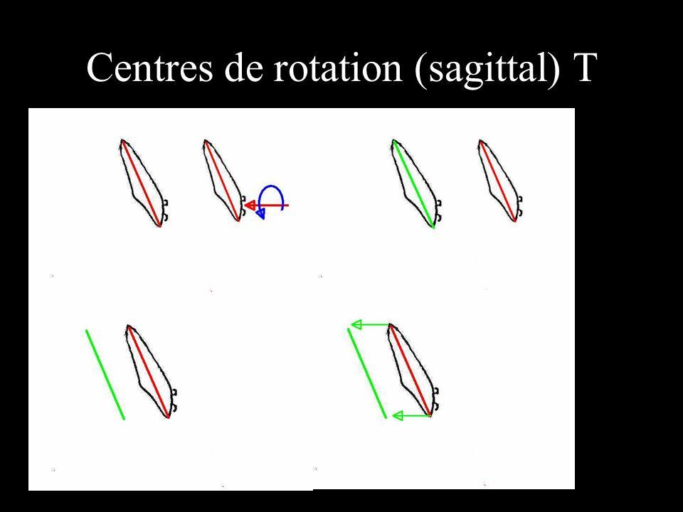 Centres de rotation (sagittal) T
