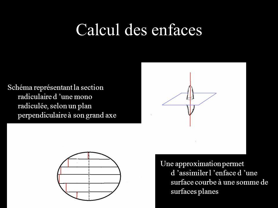 Calcul des enfaces Schéma représentant la section radiculaire d 'une mono radiculée, selon un plan perpendiculaire à son grand axe.