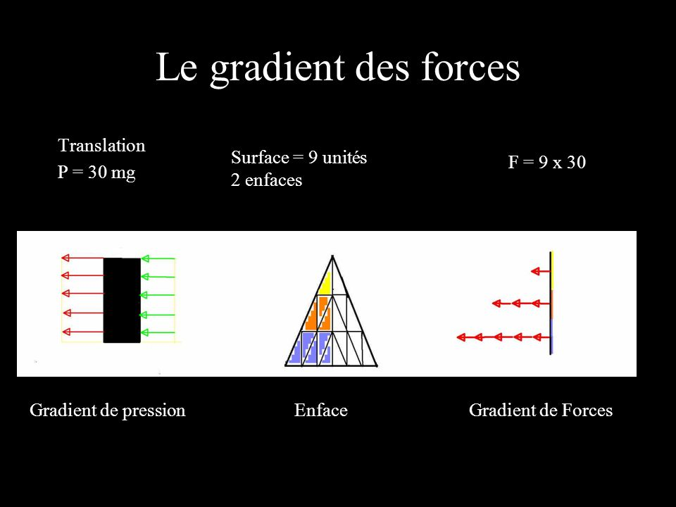 Le gradient des forces Translation P = 30 mg Surface = 9 unités