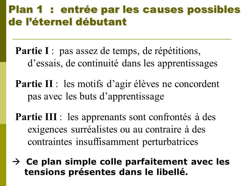 Plan 1 : entrée par les ca uses possibles de l'éternel débutant
