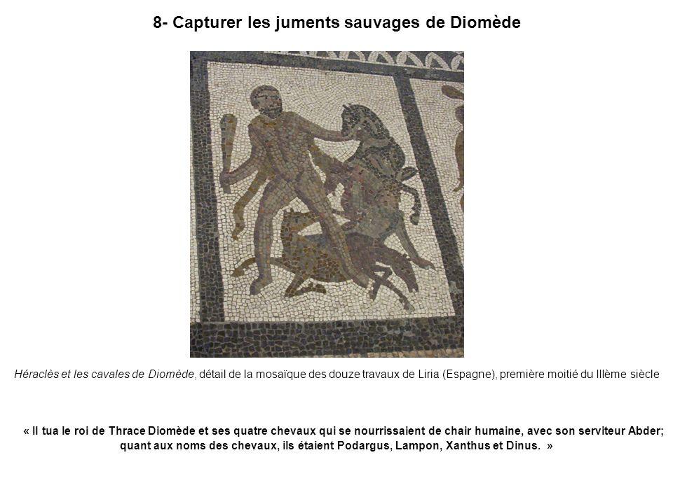 8- Capturer les juments sauvages de Diomède