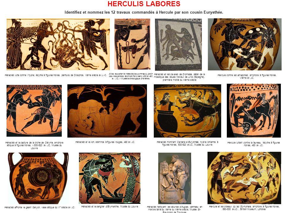 HERCULIS LABORES Identifiez et nommez les 12 travaux commandés à Hercule par son cousin Eurysthée.