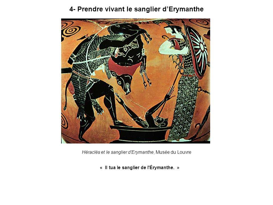 4- Prendre vivant le sanglier d'Erymanthe
