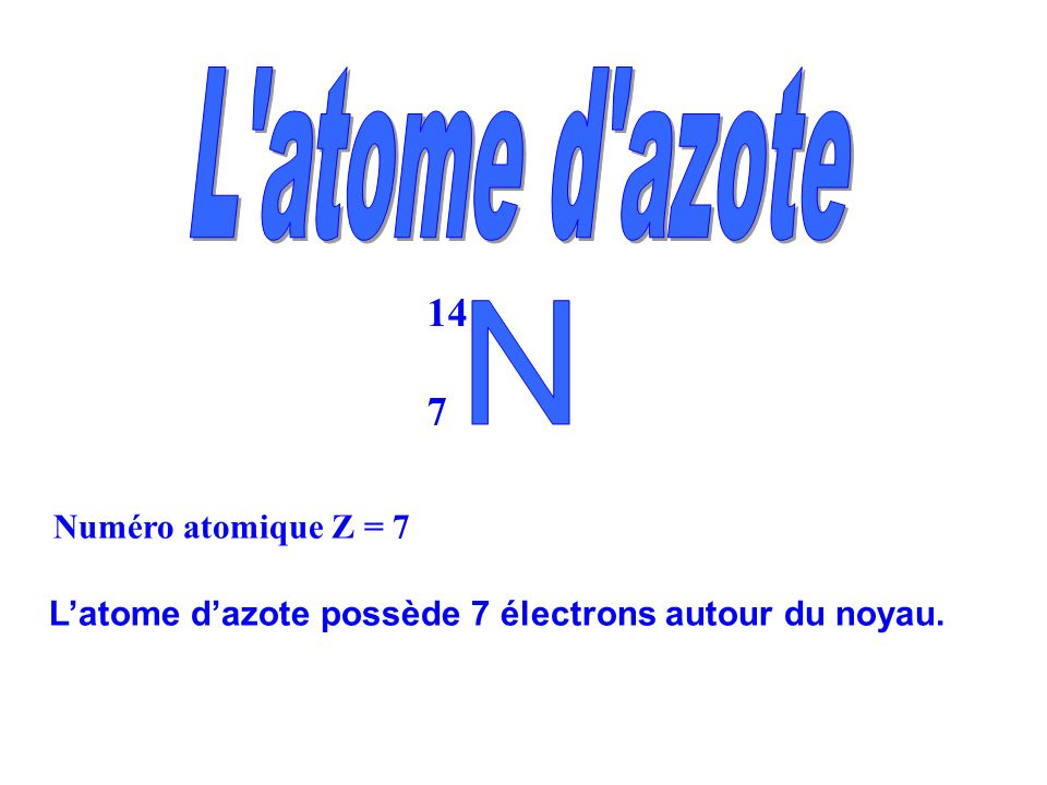 L atome d azote 14 7 N Numéro atomique Z = 7