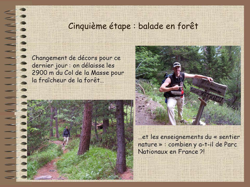 Cinquième étape : balade en forêt