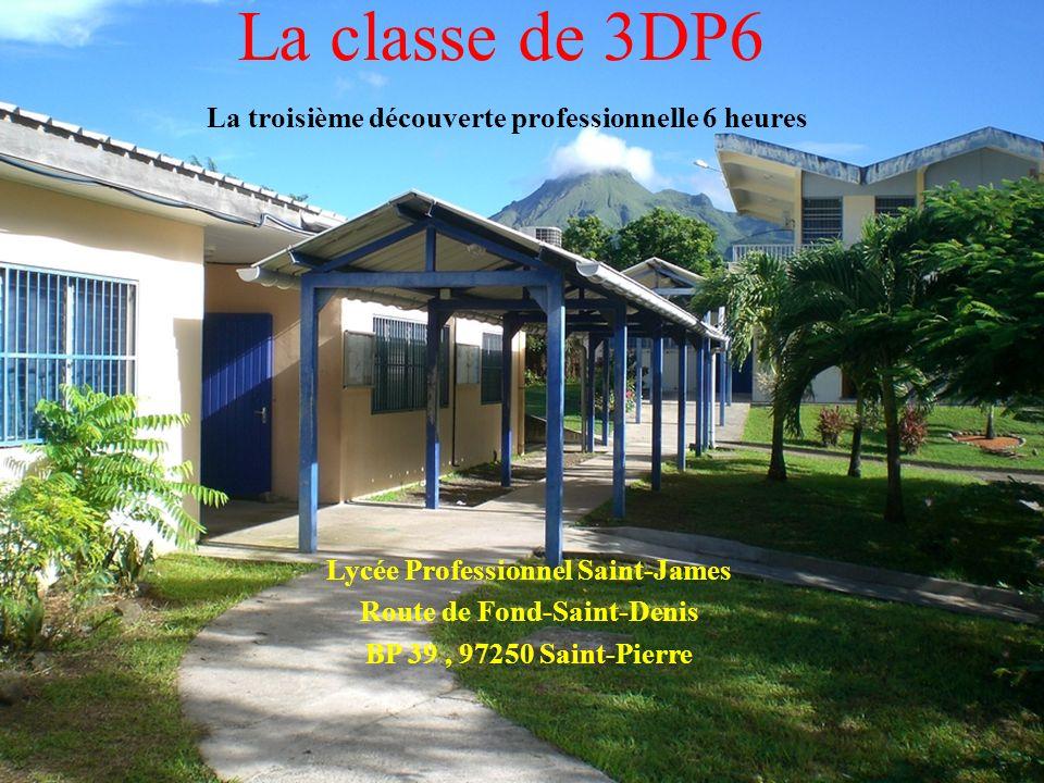 La classe de 3DP6 La troisième découverte professionnelle 6 heures