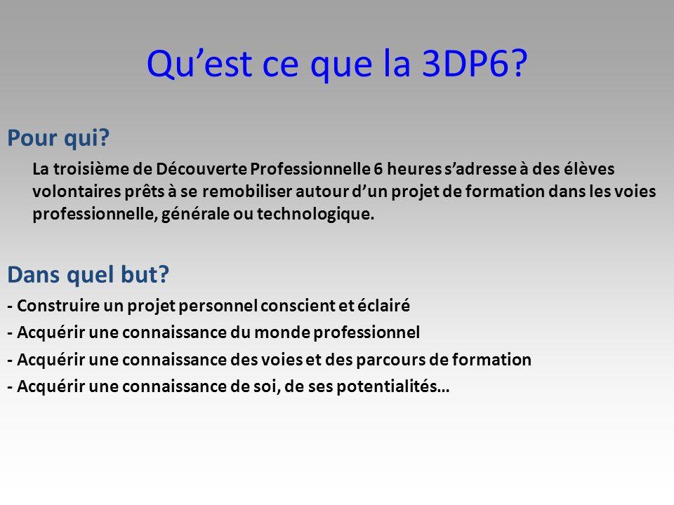 Qu'est ce que la 3DP6 Pour qui Dans quel but