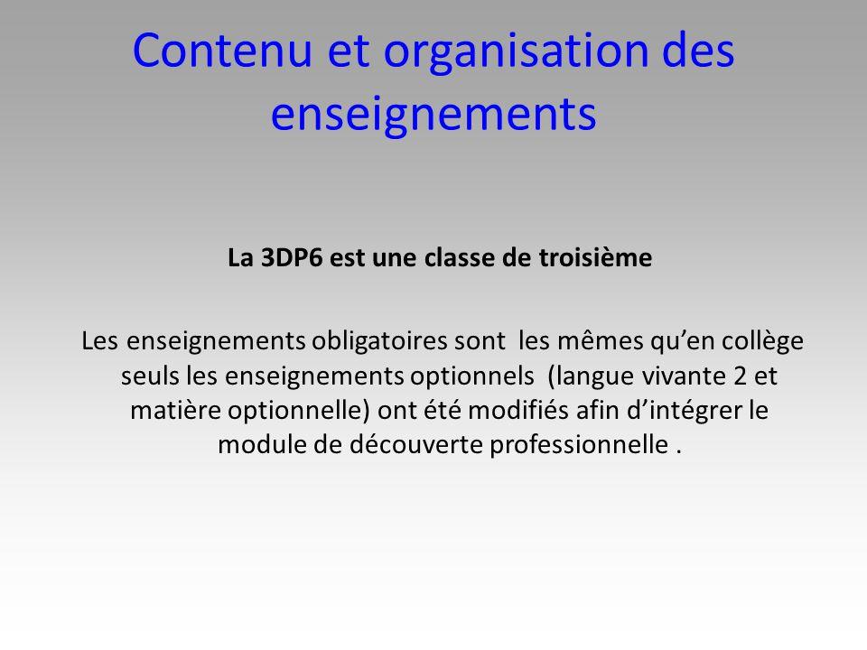 Contenu et organisation des enseignements